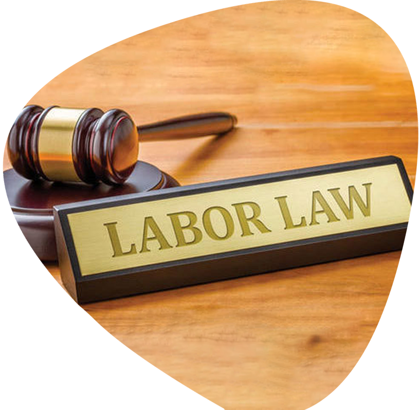https://www.maheshwariandco.us/wp-content/uploads/2021/03/labour-law.png